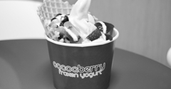 Cocoaberry Frozen Yogurt - Chattanooga, TN