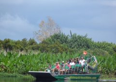 Airboat Rides At MidWay - Christmas, FL