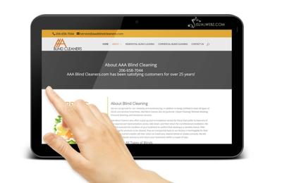 Visualwebz - Renton, WA. Seattle, Bellevue & Tacoma Web Design