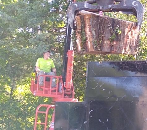 Tree Pros LLC - Remlap, AL. Tree Pros Grapple at work.