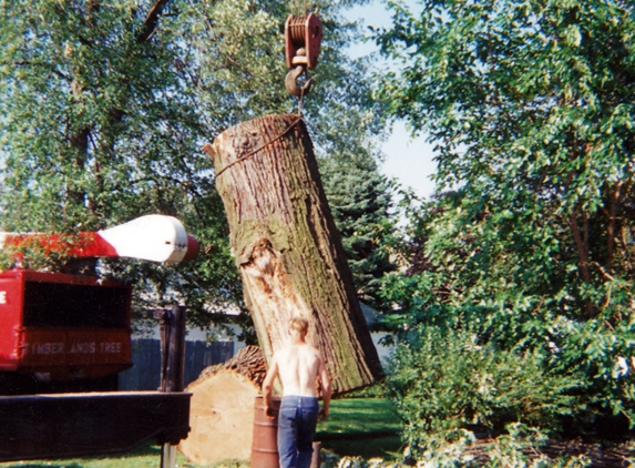 Timberlands Tree Experts Inc - North Canton, OH