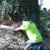 Metcalf's Tree Service