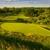Stonebridge Ranch Country Club - Stonebridge (Dye Course)