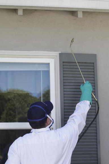 Clark Pest Control - San Diego, CA