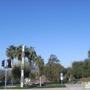Community Health Alliance Of Pasadena