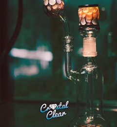 Crystal Clear Glass & Tobacco - Lansdale, PA