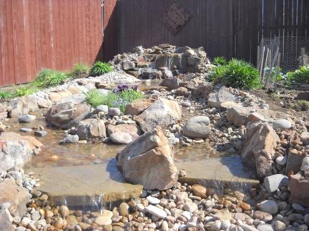 water garden image