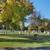 Davison-Fulton Woodland Chapel