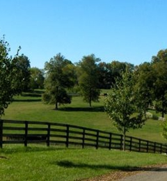 cloverdale Quarters - Sutherlin, VA
