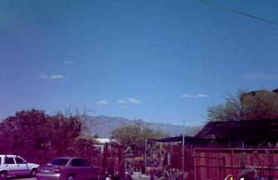 Photos 1 Silverbell Nursery Tucson Az