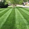 Marshall's Lawn & Landscape Inc.