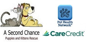 River Bridge Animal Hospital affiliations with Second Chance Pet Healthcare Network and Care Credit