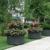Wallitsch Nursery & Landscaping