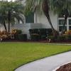 Loeza Lawn Services