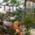 Gardener's Center and Florist The
