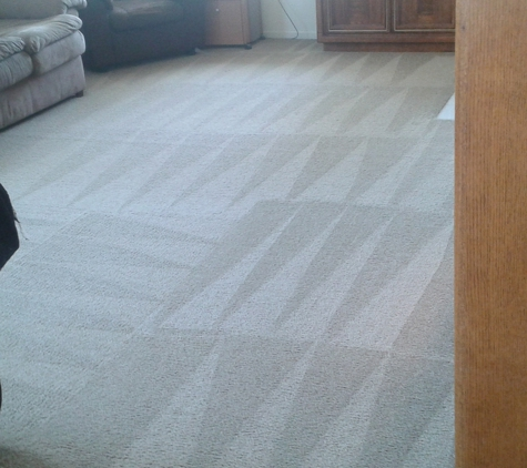Knockout Carpet Cleaning - Salinas, CA