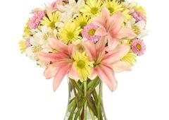 SuEllen  floral company - Cape Coral, FL