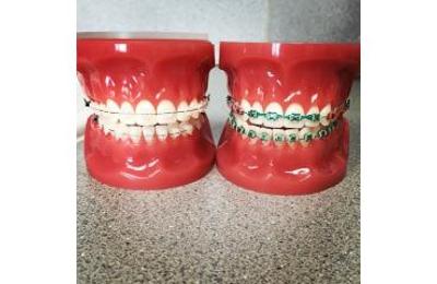 Anchorage Orthodontic Associates - Anchorage, AK