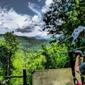 Navitat Canopy Adventures - Barnardsville, NC