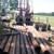 Waldron Well Drilling Inc