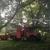 Hagan & Sons Tree Service