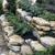 Vanice Lawn & Landscape