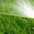 Sanderson & De Haan Lawn Sprinkling