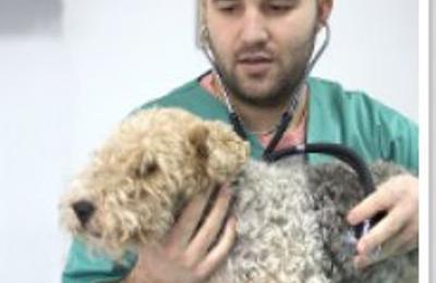 VCA Gwynedd Animal Hospital - Lansdale, PA