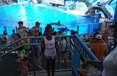 Sea World Entertainment Inc - Orlando, FL
