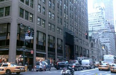 Todd & Levi - New York, NY