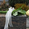 Affordable Burial & Cremation Service Inc