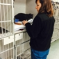 Metropolitan Emergency Animal Clinic - Rockville, MD
