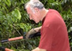 Corner Landscaping Tree Service Inc 824 Rhawn St Philadelphia Pa 19111 Yp Com