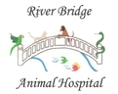 River Bridge Animal Hospital caring expert veterinarians for West Palm Beach