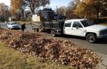 Leaf Removal Midtown Memphis, TN