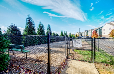 Carden Place Apartments - Mebane, NC