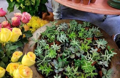 Gennarelli's Flower Shop - Binghamton, NY
