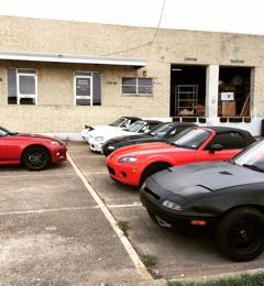 Track Dog Racing - Dallas, TX