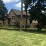 Cornett Grass