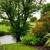 Green Home Lawn Services LLC