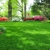 Top Turf Lawn Care and Pest Control