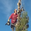 Total Tree Removal
