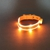 Lighted Leashes