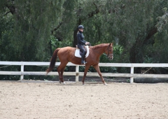 Portuguese Bend Riding Club - Rancho Palos Verdes, CA