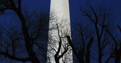 Washington Monument - Washington, DC