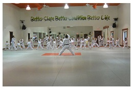 affordable kids karate lessonsstyle=