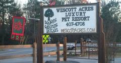 Wescott Acres Pet Resort - Columbia, SC