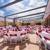 Courtyard by Marriott