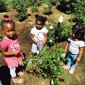 Bright Futures Learning Center - Palmdale, CA