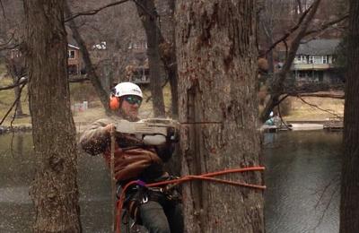 Bart's Tree Service - Danbury, CT